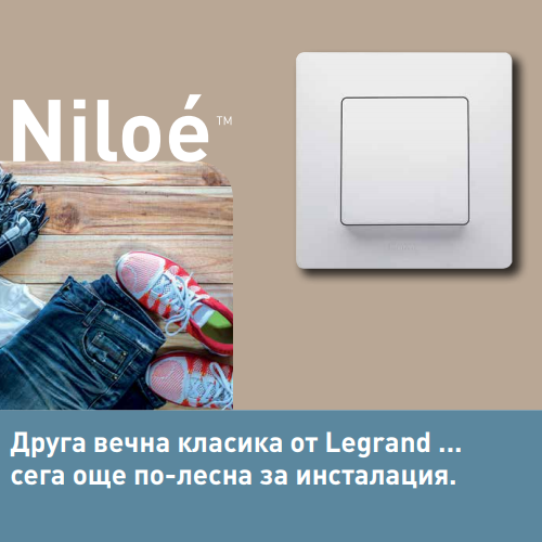 niloe_cat2
